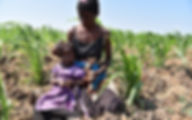 A mother and child sitting in a crop field in Malawi.