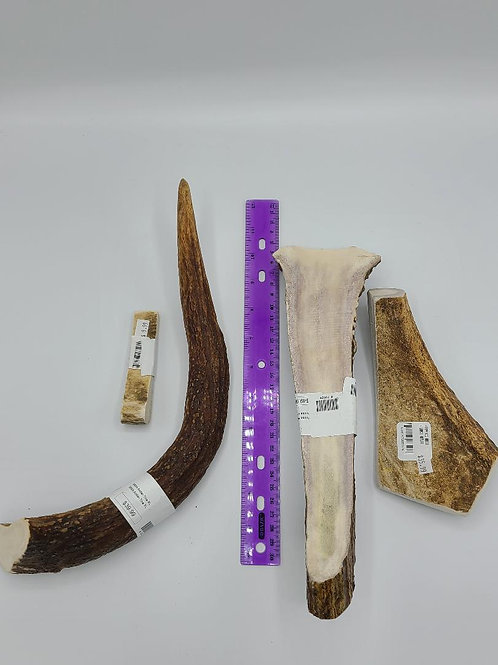 Assorted Moose Antlers