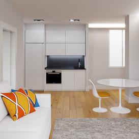 Construccon de 4 viviendas de lujo en Miraconcha( Donostia-San Sebastián)