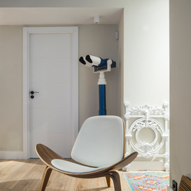 Proyecto rehabilitación e interiorismo (Donostia-San Sebastián)
