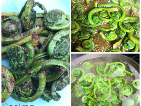 My First Time Cooking with Fiddlehead Ferns