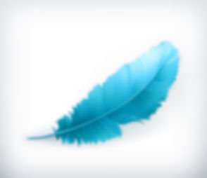 Feather_teal.jpg