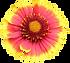 OKHC_D_LogoBug.png