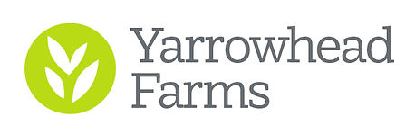 YF Final Logo 1