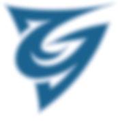 CGS_D_G_Bug.jpg