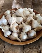 YF_D_Garlic.png