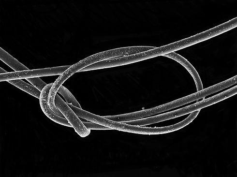 Complex knot v2b.jpg