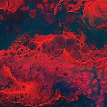 blood cassi-josh-644012-unsplash (1).jpg