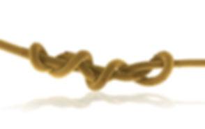 HAIR Yellow JPG.jpg