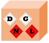 DGNL Logo_Colour (1).jpg