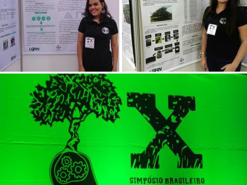 Participação no X Simpósio Brasileiro de Pós-Graduação em Ciências Florestais