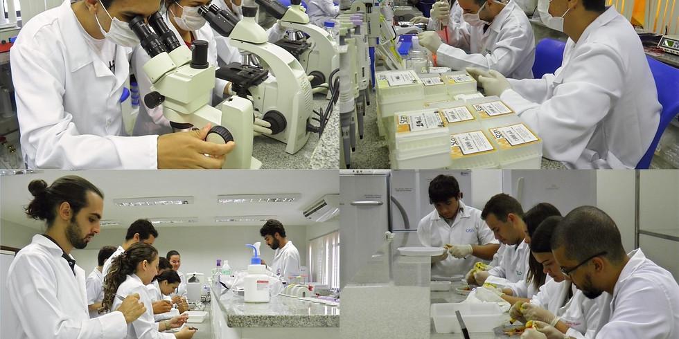 Orientação de boas práticas no laboratório