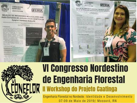 Participação no VI Congresso Nordestino de Engenharia Florestal