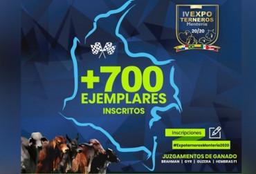 Conozca las variadas actividades que trae la IV Expoterneros en Montería