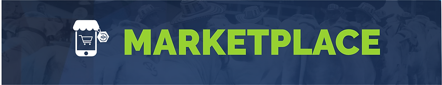 banner marketplaces.png