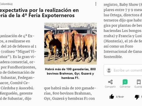 Crece expectativa por la realización en Montería de la IV Feria Expoterneros