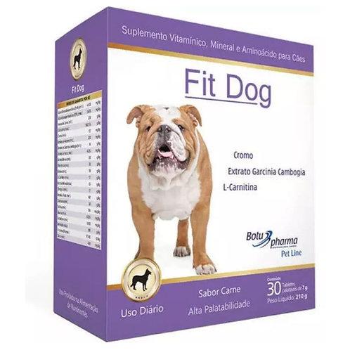 Suplemento Vitamínico Fit Dog sabor carne 210g