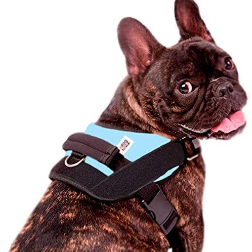 Coleira Peitoral Personalizada Para Cachorro Juno Tam G Azul