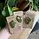 Thumbnail: Philodendron Pink Princess handmade clay pin