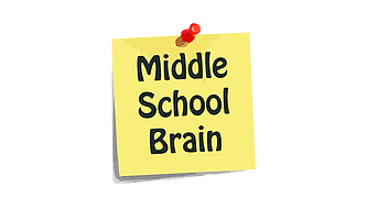 Middle School Brain.png