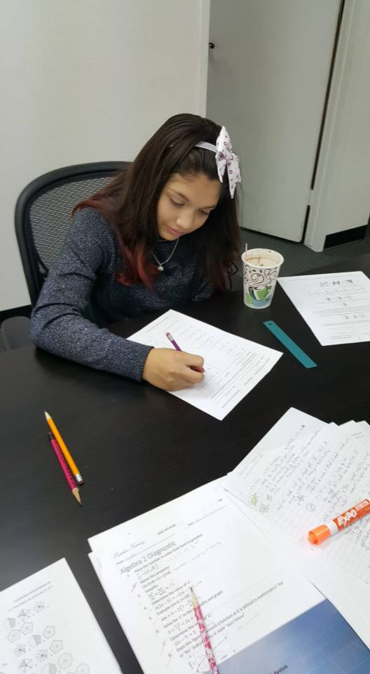 Math/English Private Lessons