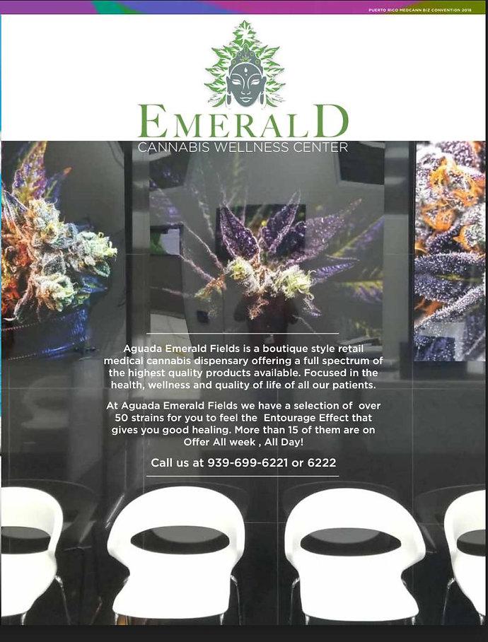 EmeraldFieldsinfo.jpg
