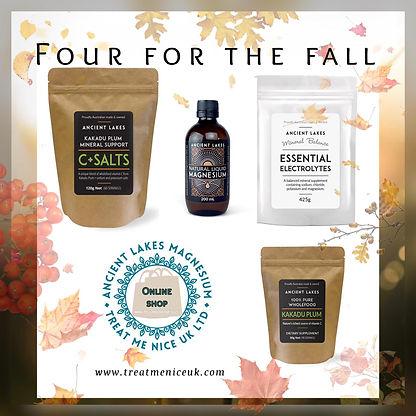 4 fall.jpg