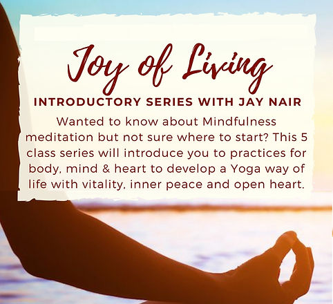 Joy Of Living Flyer 2 (1) - Copy.jpg