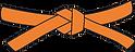 orange belt.png