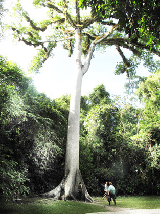 Guatemala Reise .jpg