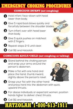 Emergency Choking Instructions Magnet