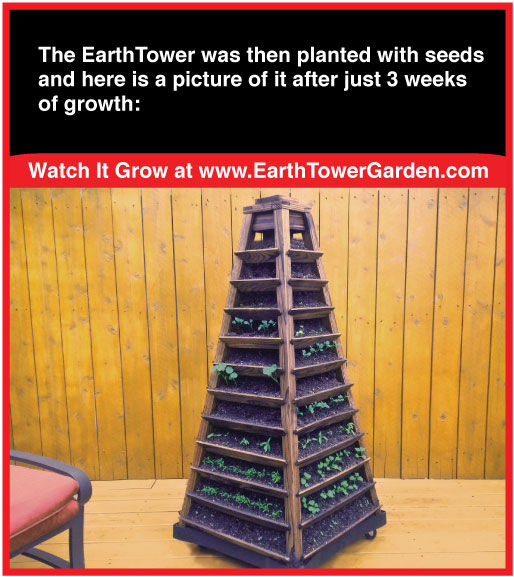 Earth Tower three weeks growth