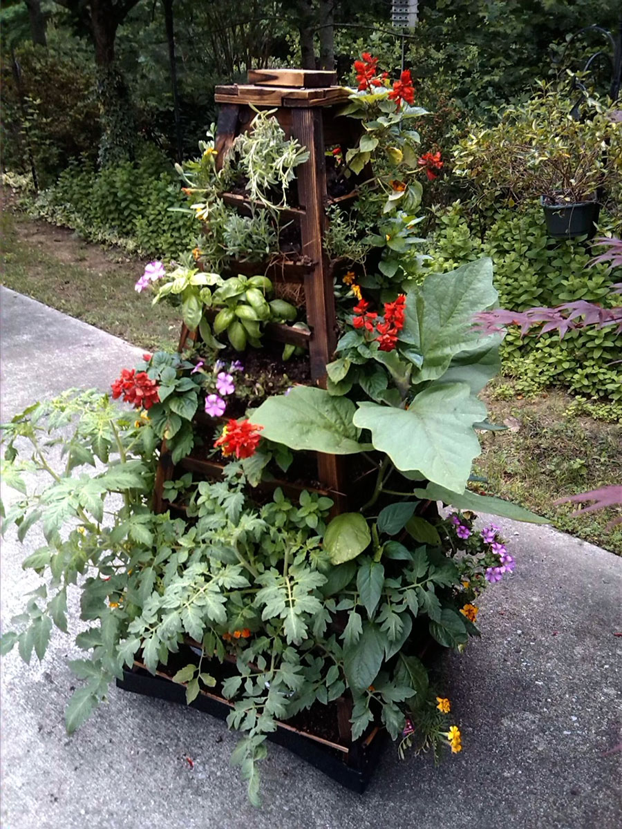 Veggies, Herbs and Flowers