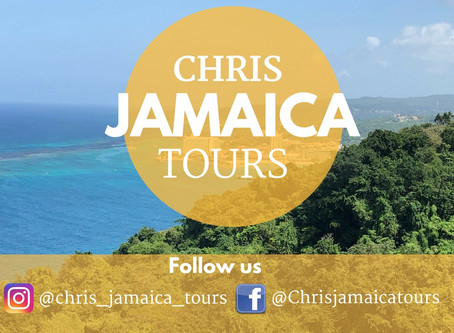 AMAZING Service.. Call on Chris for your next Jamaica Tour!