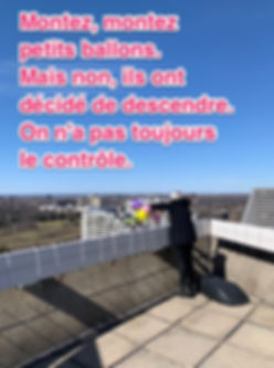 IMG_0441_jpg.jpg