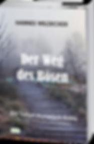 05_Der_Weg_des_Bösen_3D.png