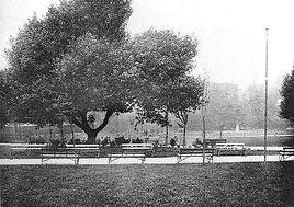 Sexby image showing new gardens.jpg