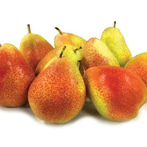 Forelle Blush Pears