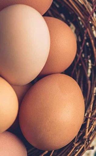 Free Range Chicken Eggs (Tray of 30)