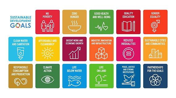 UN Sustainability Goal.jpg