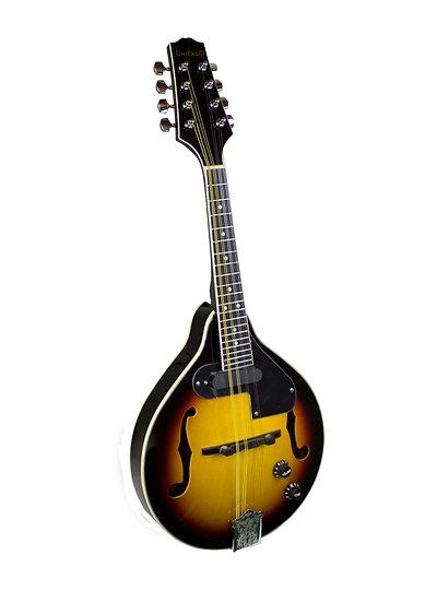 M1E Chicago Mandolin (+pickup)