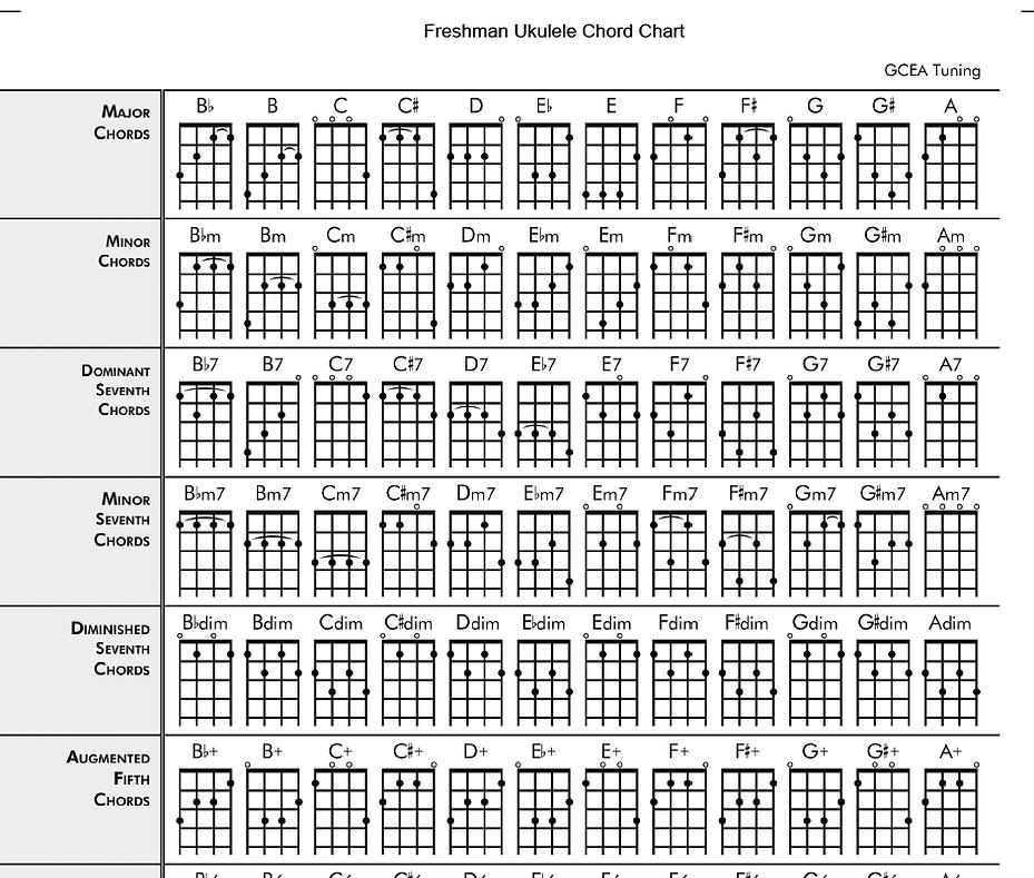 Freshman Guitars ukuleles