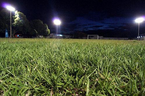 manutenção do gramado
