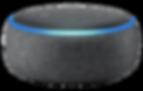172-1723343_alexa-amazon-bluetooth-speak