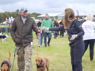 Last call for exhibitors at biggest dog festival in the North East