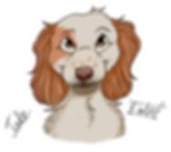 dog training bedlington