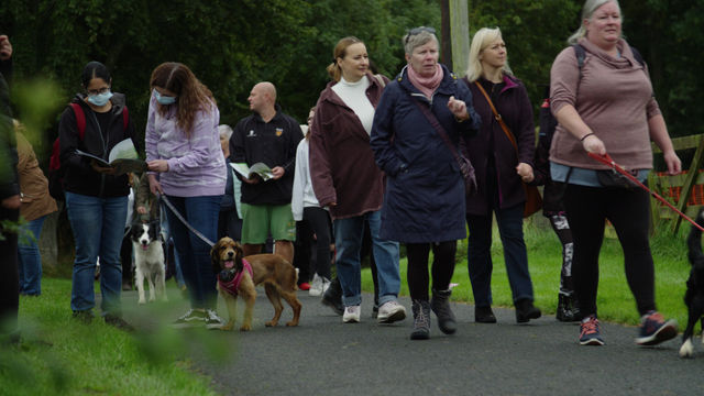 Festival proves a hit with the dogs