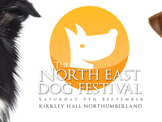 Booking a trade stand at the NE Dog Festival