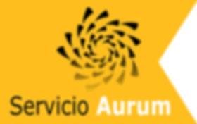 Con Aurum, tu empresa contará con el servicio de consultoría más completo.