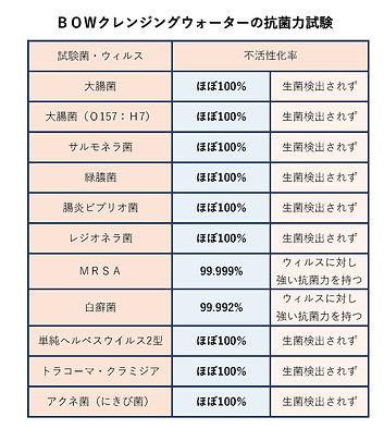 BO.W.クレンジング表.jpg